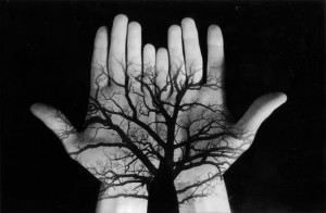 tree_hands____by_tine85