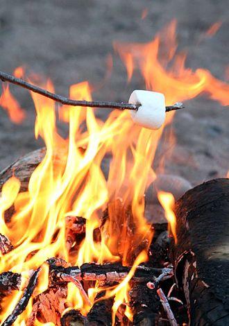 330px-RoastingMarshmallow